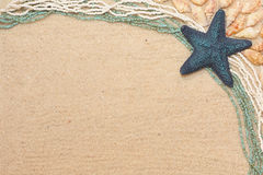 Background with a blue starfish and shells. Background with a blue starfish, shells and beads Royalty Free Stock Image