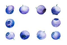 Background With Blueberries In Watercolor Stock Photography