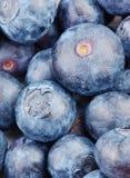 Background of blueberry Stock Photos
