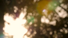 Background blur natural sunlight bokeh abstract tree. stock footage