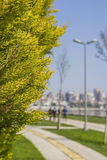 Background blur in a park on the waterfront in the area of Kadikoy Royalty Free Stock Images