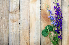 Background of board with flowers stock photography