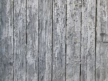 The background of the boards wooden boards with shabby paint the old grey boards stand in a row Royalty Free Stock Photos