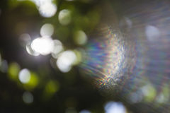 Background bokeh . Royalty Free Stock Photography