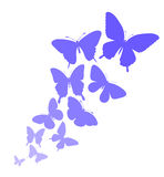 Background with a border of butterflies flying. Stock Photo