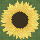 Background border frame with sunflower petals contour Royalty Free Stock Photo