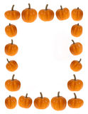 Background or border image of pumpkins; food,  thanksgiving or h. This stock photo features a white background and is bordered on all 4 sides with mini pumpkins Stock Image