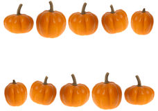 Background or border image of pumpkins; thanksgiving or hallowee. This stock photo features a white background and 2 rows of mini pumpkins as a border.  Great Stock Photography