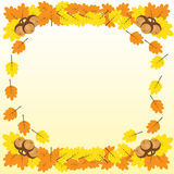 Background with a border of oak branches with leaves and acorn. S, brown contours on yellow vector illustration