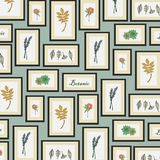 Background of botanic pattern Royalty Free Stock Image