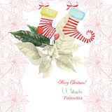 Background  with bouquet of  Christmas poinsettia and sock Stock Image