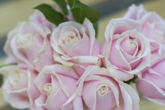 Background bouquet of delicate white and pink roses Stock Photo