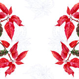 Background  with bouquet of red poinsettia-02 Royalty Free Stock Image