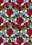 Background from bouquet of red roses with asters and  periwinkle Stock Images