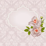 Background with bouquet of roses with leaves and frame. Stock Photo