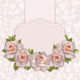 Background with bouquet of roses with leaves. Royalty Free Stock Images