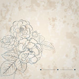 Background with bouquet of roses Royalty Free Stock Photography