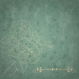 Background with bouquet of roses Royalty Free Stock Images