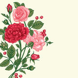 Background with a bouquet of roses. Royalty Free Stock Photos