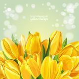 Background with a bouquet of yellow tulips Royalty Free Stock Images