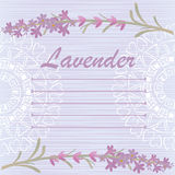 Background with a branch of lavender Stock Photography