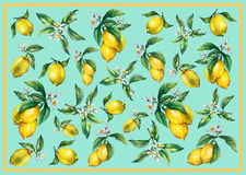 The background of the branches of fresh citrus fruit lemons with green leaves and flowers. royalty free illustration