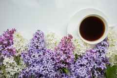 Background with branches of lilac and a Cup of black coffee Stock Image