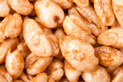 Background of breakfast cereal from aired wheat close-up macro Royalty Free Stock Images
