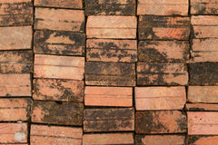 Background of brick floor texture. Stock Photography