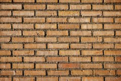 Background of brick wall. Royalty Free Stock Images