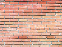 Background brick wall in a bright day. Background brick wall in a bright sunny day Royalty Free Stock Image