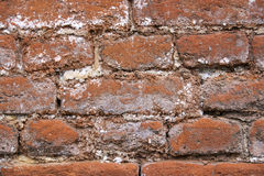 Background of the brick wall Stock Photo