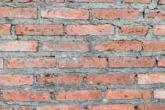 Background of brick wall. Texture Royalty Free Stock Photo