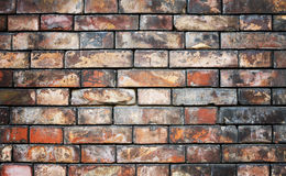 Background of brick wall Stock Photography