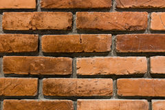 Background of brick wall texture. Backgrounds of brick wall texture Royalty Free Stock Image
