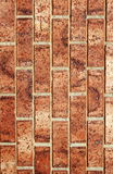 Background of brick wall texture, brick walls Stock Images