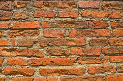 Background of brick wall texture. Stock Images