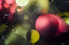 Background of bright colored circles, a close-up shot.  stock photo