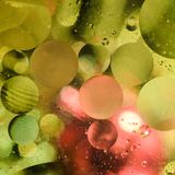 Background of bright colored circles, a close-up shot.  royalty free stock images