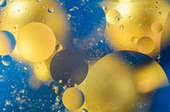 Background of bright colored circles, a close-up shot.  stock photography