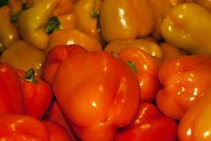 Background - bright orange and yellow fruits of capsicum bell pepper Royalty Free Stock Photo
