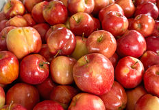 Background of Bright Red Apples Stock Image