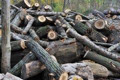 Background of broken woodes Stock Images