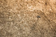 The background of brown and black stone in Asia Phuket Thailand. The background of yellow and black stone in Asia sea Phuket Thailand royalty free stock photos