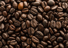 Background of brown coffee beans Stock Photos