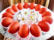 Background with brown Easter eggs and white spring flowers Stock Images