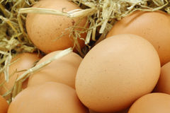 Background of brown eggs Stock Photos