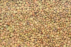 Background of brown lentils Stock Photo