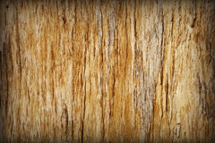 Background - brown rotten tree with cracks Royalty Free Stock Photography
