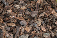 Background brown wood chips Stock Images